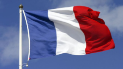 French Flag Smaller -1